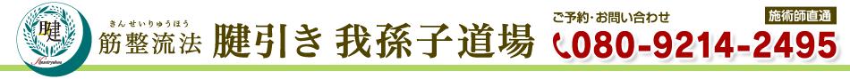 title_obi3.png